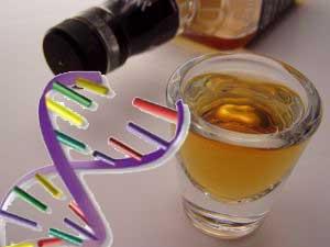 Наследственная предрасположенность к пьянству