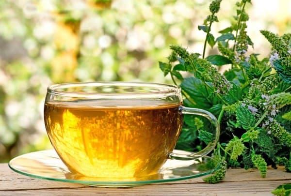 «Антизапойный» чай